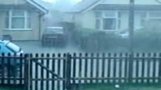 Cass The Beagles 1st Thunderstorm