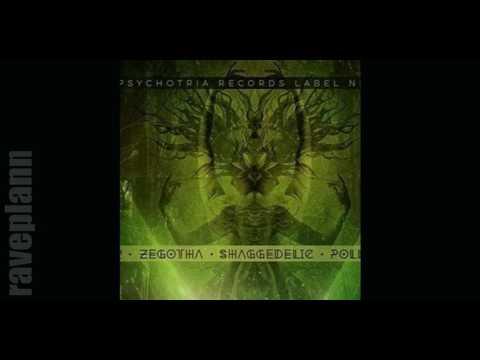 Dark Psytrance Psychotria Records Label Night with Fobi 2016 01 09