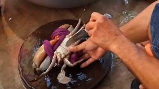 Cách mà người dân Cà Mau chế biến một con Cua biển