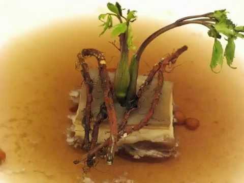 2008年花蓮遠雄之藥膳創意料理比賽