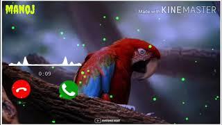 Tenu samajh betha she me Jindagi !!! Best new ringtone download 2020