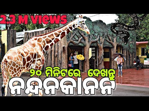 Nandankanan - 2nd Largest Zoo In India || #Go_Uttam