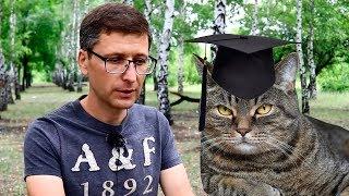 Стоит ли поступать в университет? Что дает высшее образование?