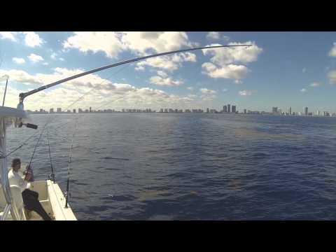 Fishing off Miami Jan 2014 Calm Seas