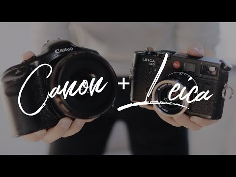 A Wedding Photographer's Film Cameras - Canon, Leica, & Olympus