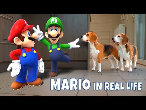 SUPER MARIO in REAL LIFE | Funny Dogs Louie & Marie