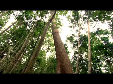 Trailer: Climate of Change — Feature Documentary, 2010