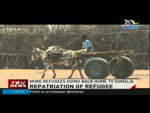 UNHCR optimistic that Dadaab Camp will stay open