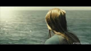 Águas Rasas - Clipe mostra momento do ataque de tubarão