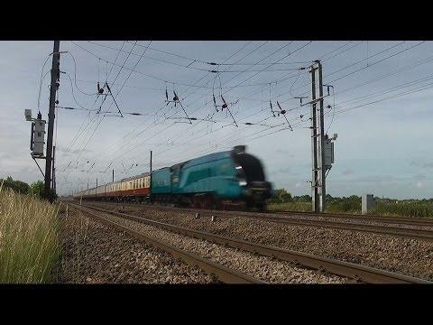 Bittern at 90mph - High Speed Steam Train