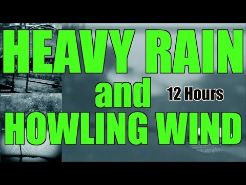 "Heavy Pouring Rain And Thunder And Wind | 12 Hours | ""Rain"" ""Rain Sounds"" ""Sleep Sounds"""