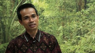 FLEGT in Indonesia: An interview with Sulthon Mohammad Amin