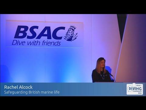 Safeguarding British marine life - Rachel Alcock at BSAC's Diving Conference 2016