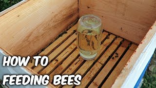 feeding bees in a fall beekeeping