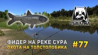 Видео рыбалка - ТВ, видео и фильмы о рыбалке – Рыбалка ...