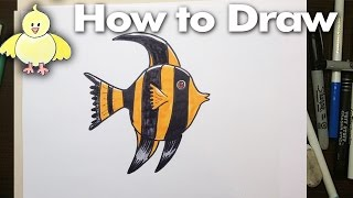 How to draw a Cartoon Angel Fish step by step!