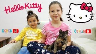 Ceylin & Ceren'in Kedisi Duman Karşınızda! My little cat! Johny Yes Papa ABC Song Pretend Play Video Video