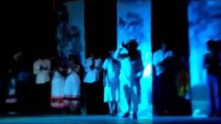 Carnaval pisaflores hidalgo 2014