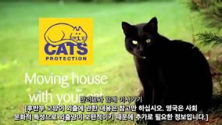 """하이Cats Protection3편 """"반려묘와 이사가기…"""