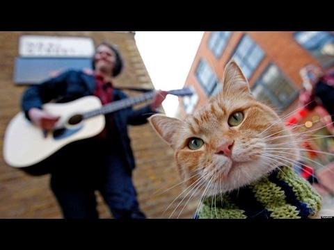 A Street Cat Named Bob - Short documentary (Napisy PL)