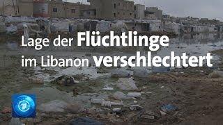 Hunger und Kälte: Lage in Flüchtlingslagern im Libanon verschlechtert sich