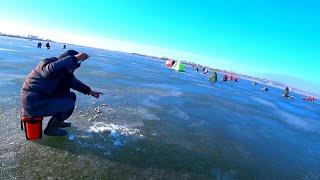КОСЯК РЫБЫ НА МЕТРОВОЙ ГЛУБИНЕ зимняя рыбалка 2020