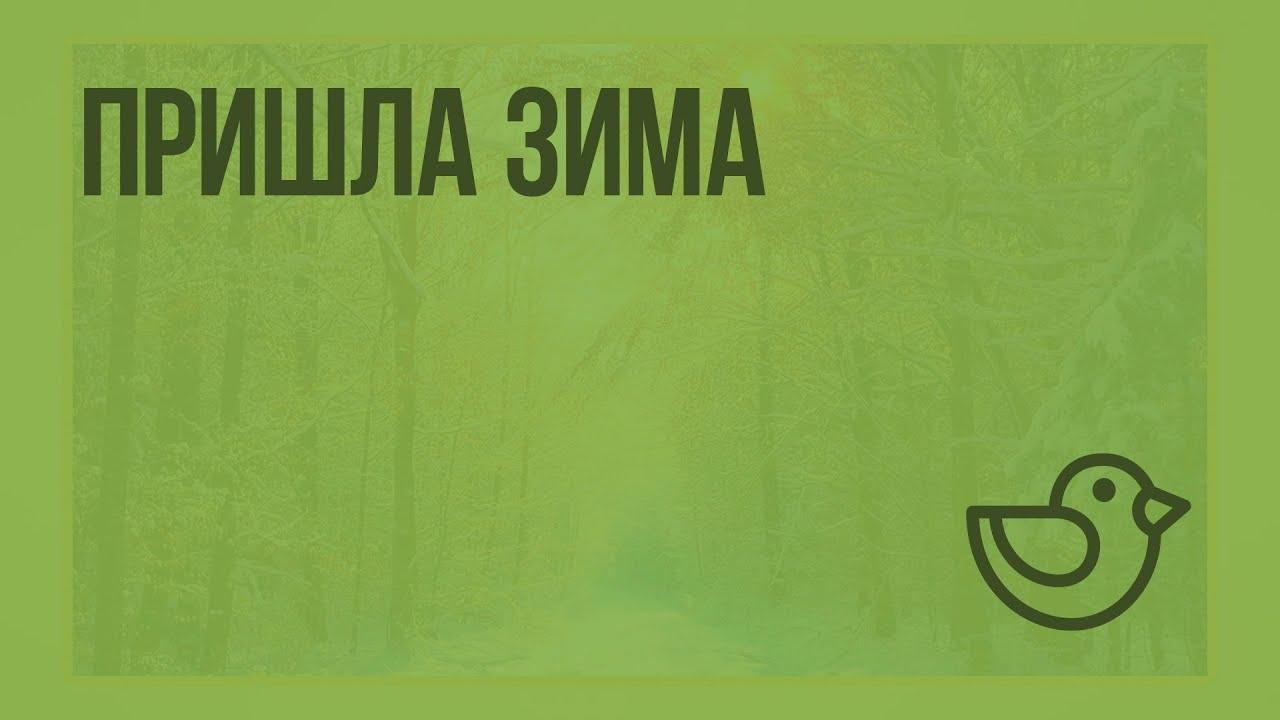 Www.interneturok.ru 2 класс окружающий мир