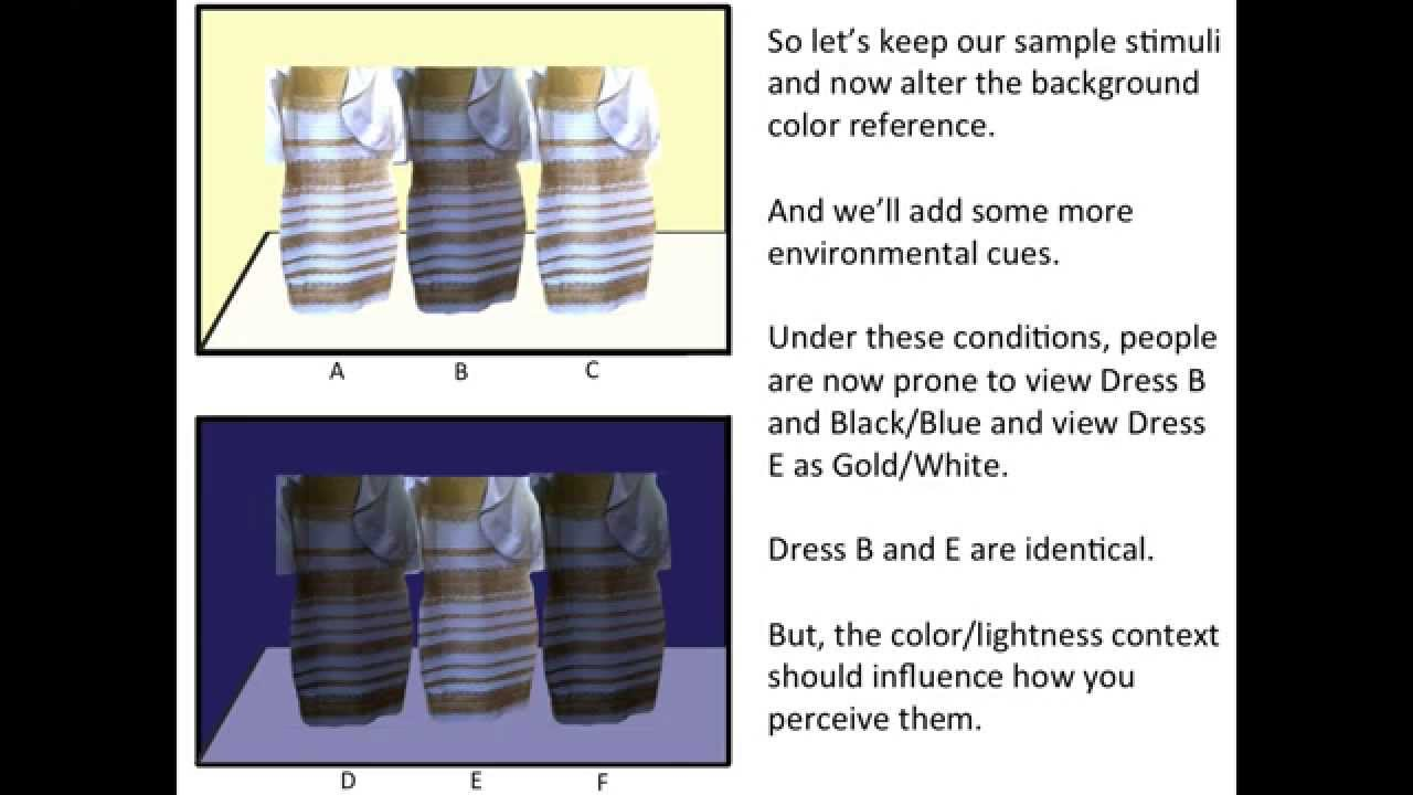 The dress explained - Blue Dress Explanation
