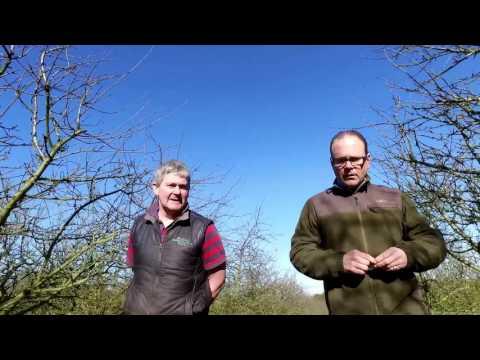 Daniel visiting one of our apple farmers Jim Duggan in County Laois