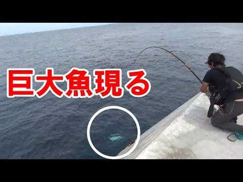 【神回】最強装備で1mの巨大魚とガチンコ勝負 ~巨大魚との遭遇【後編】