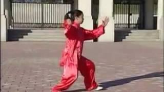 Yang Style Taijiquan 108  part 1 of 3