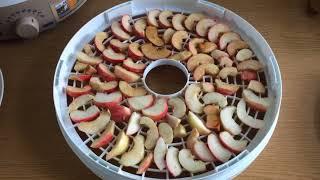 Сушка яблок, груш, слив | Электросушилка для фруктов и овощей | Домашние сухофрукты (17/8/2018)