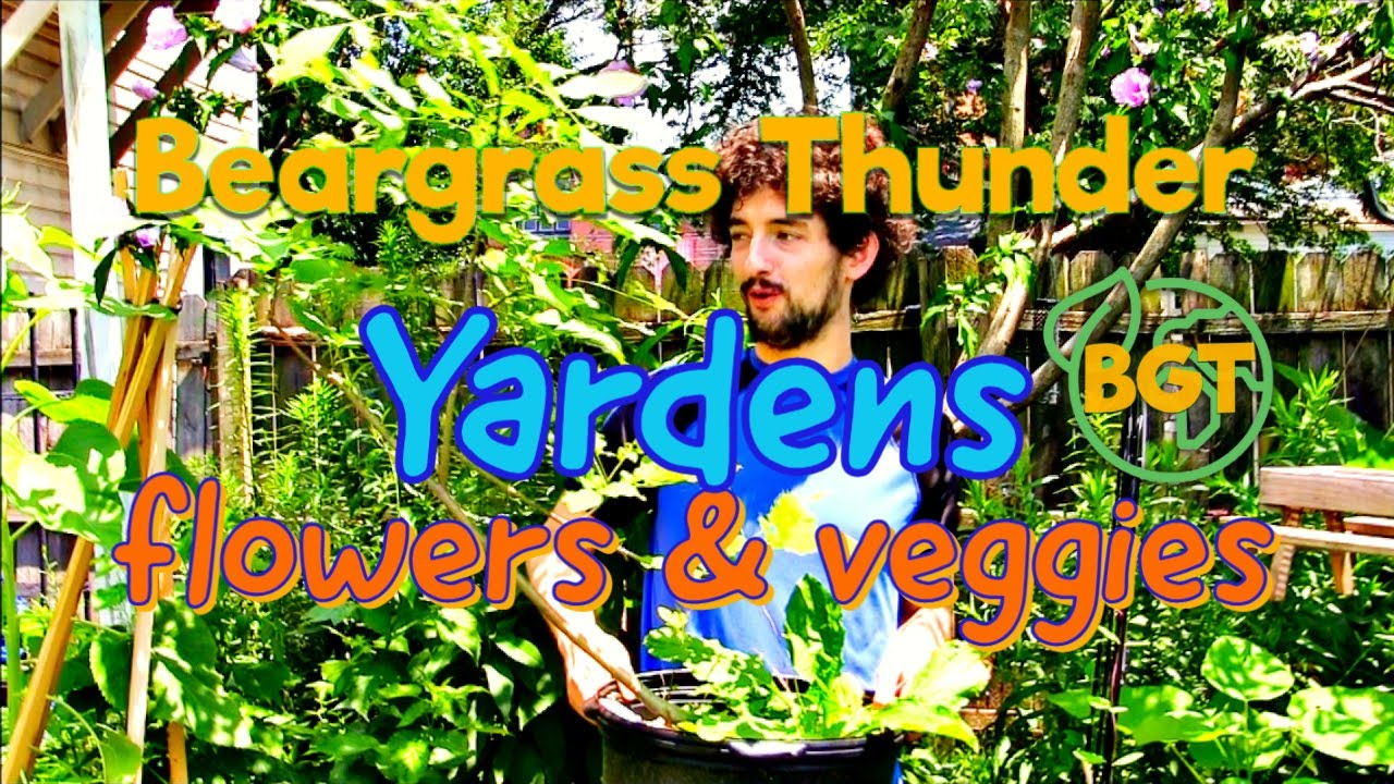 Beargrass Yardens: Native flowers & vegetables you can grow in your own yarden!