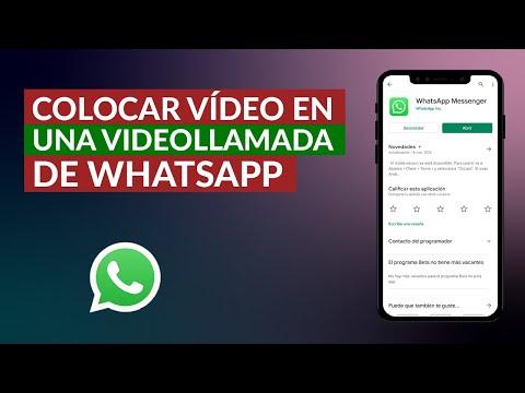 Cómo Poner un Vídeo en una Videollamada de WhatsApp – Muy Fácil