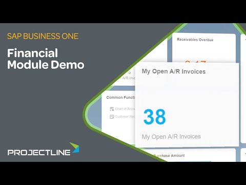 SAP Business One Financial Module | ERP Demo for SMEs
