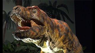 暗闇の中で恐竜探索 ナイトミュージアムも開催 名古屋・ジュラシック大恐竜展