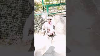 लोक संगीत मनाली हाडीमबा मंदिर