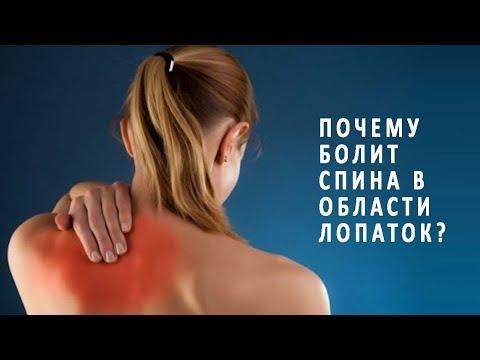 Спина болит в области лопаток