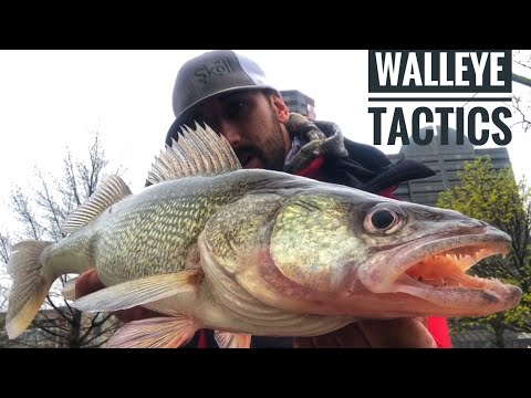 """SLAMMING Spring WALLEYE""- (HOW To CATCH More FISH From SHORE)"