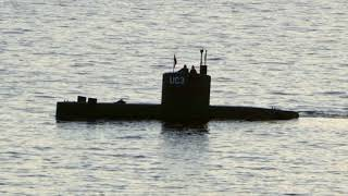 Accident on sub killed Kim Wall: Danish owner