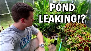 Why Is My Pond Leaking...