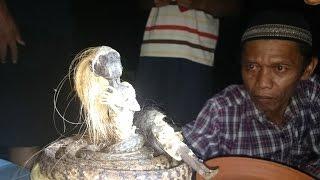 Seram! Penampakan Setan Jenglot di Bergota Semarang (ghost)