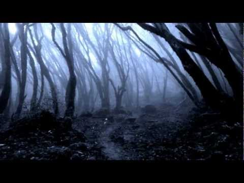 Le fantôme des bois (musique très inquiétante)