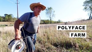 Joel Salatin's Fountain of Youth (Why He Never Get's Sick)