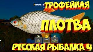 русская рыбалка 4 Плотва озеро Комариное рр4 фарм Алексей Майоров russian fishing 4