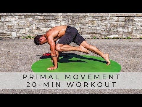PRIMAL MOVEMENT FITNESS: Bodyweight & Core Workout (Follow Along)