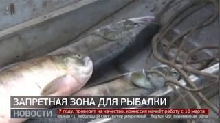 Запретная зона для рыбалки. Новости. 11/03/2020. GuberniaTV