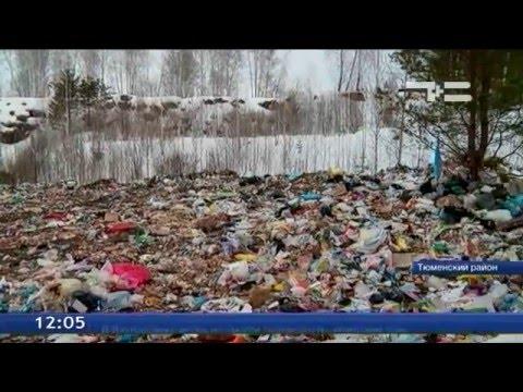 Контролировать вывоз отходов поможет обязательное лицензирование
