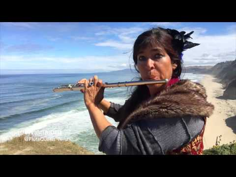 Pirates of the Caribbean Flute Cover by Viviana Guzman