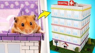 Domowej roboty pięciopoziomowy szpital-labirynt dla chomika 🐹🏥❤️